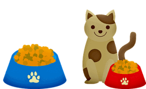 Cat Food | Fluffy Kitty