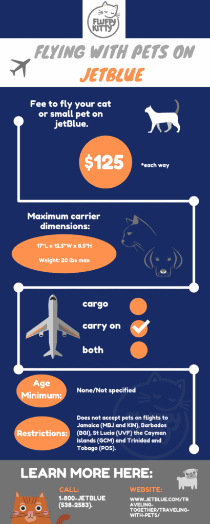 jetBlue pet policy | Best Airlines for Cats by Fluffy Kitty
