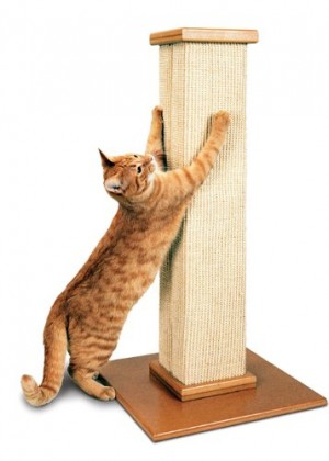 Best Cat Scratching Post for Cats | smartcat ultimate scratching post