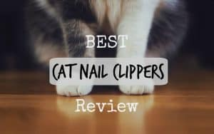 best cat nail clippers review