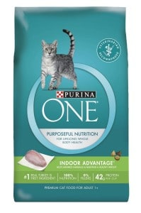 Purina One Dry Cat food for maine coons