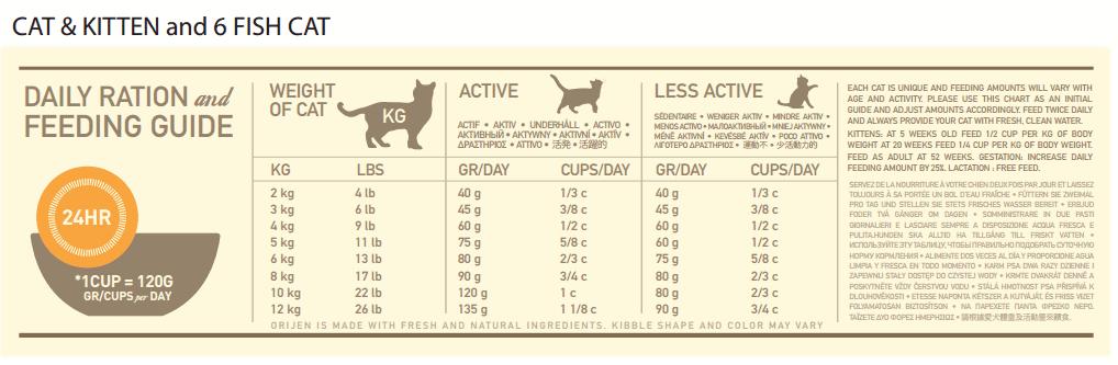Cat nutrition - Fluffy Kitty