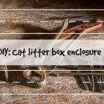 Dream CATcher: The Story of Neko & Kecik   Cat Stories