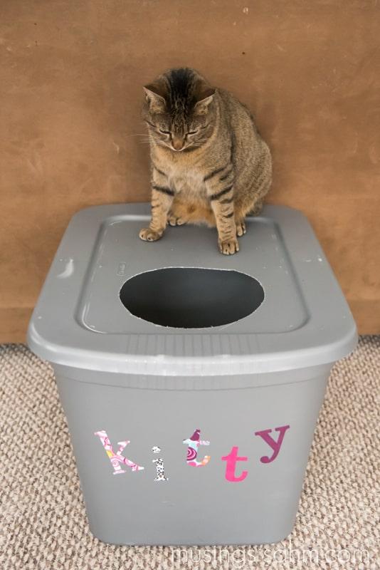 DIY-Kitty-Litter-Box