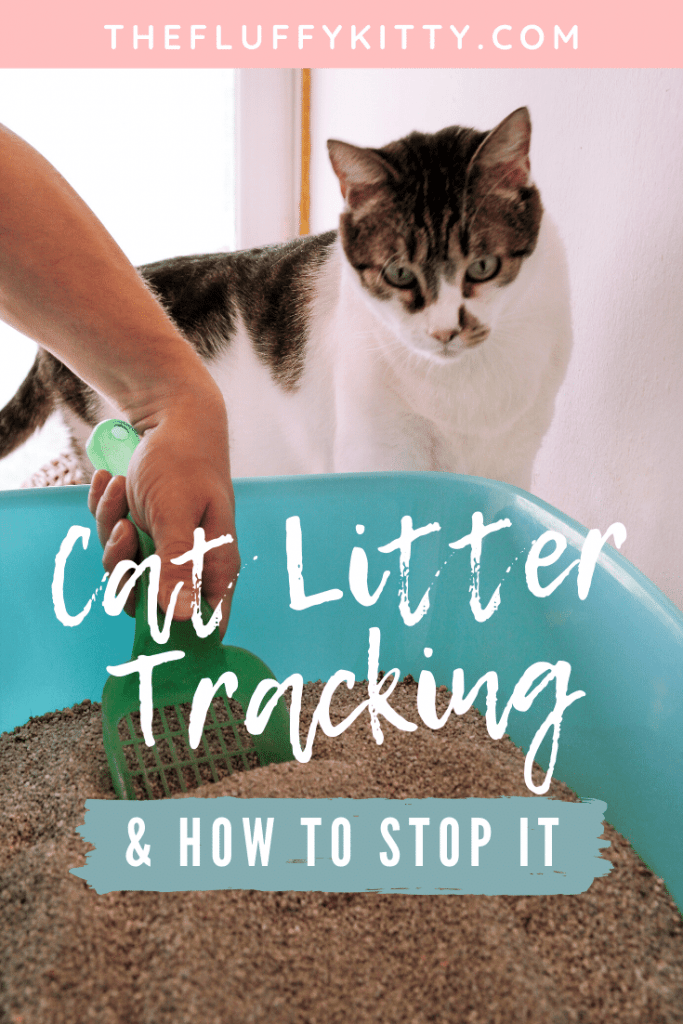 How to Stop Your Cat from Tracking Litter Everywhere #catlitter #cats #catlitter #cats Guide by Fluffy Kitty www.thefluffykitty.com