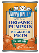 Cat Food for Sensitive Stomachs   Fluffy Kitty