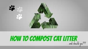 how-to-compost-cat-litter