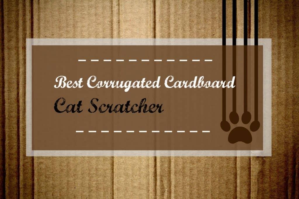 best-corrugated-cardboard-cat-scratcher-header