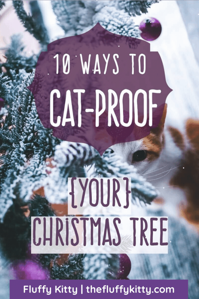 10 Ways to Cat-Proof Your Christmas Tree | Fluffy Kitty