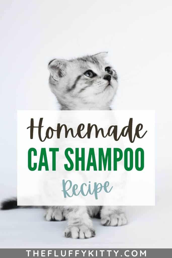 cat shampoo pin 1