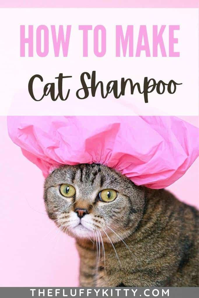 cat shampoo pin 2