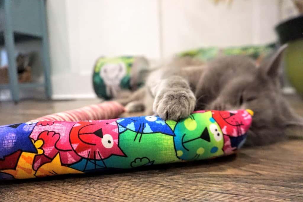 Kitty Kick Stix Review | Fluffy Kitty