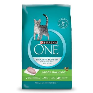 Purina One Cat Food Review   Fluffy Kitty