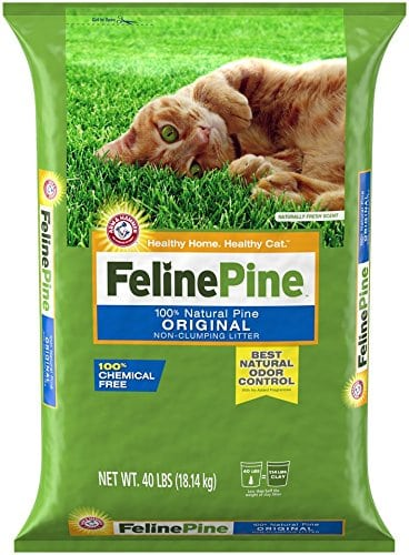 Dust Free Cat Litter | Our Selection