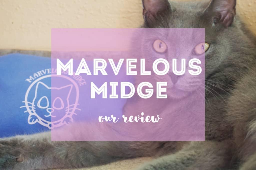 Marvelous Midge Review | Fluffy Kitty