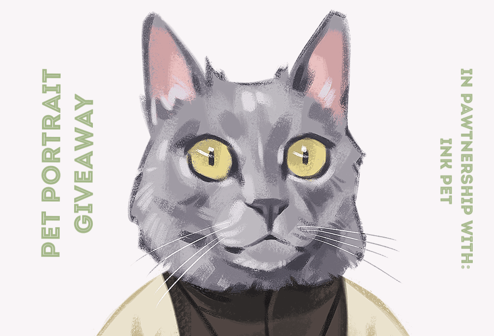 Personalized Pet Portrait Giveaway