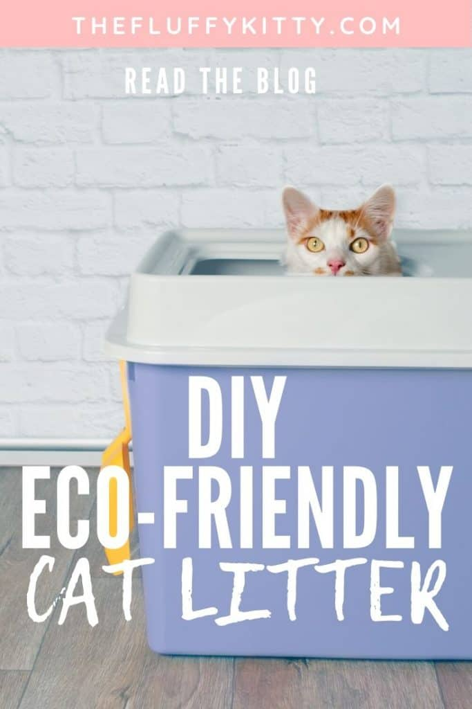 DIY Eco-Friendly Cat Litter #cats #catlitter #ecofriendly #diy | Fluffy Kitty
