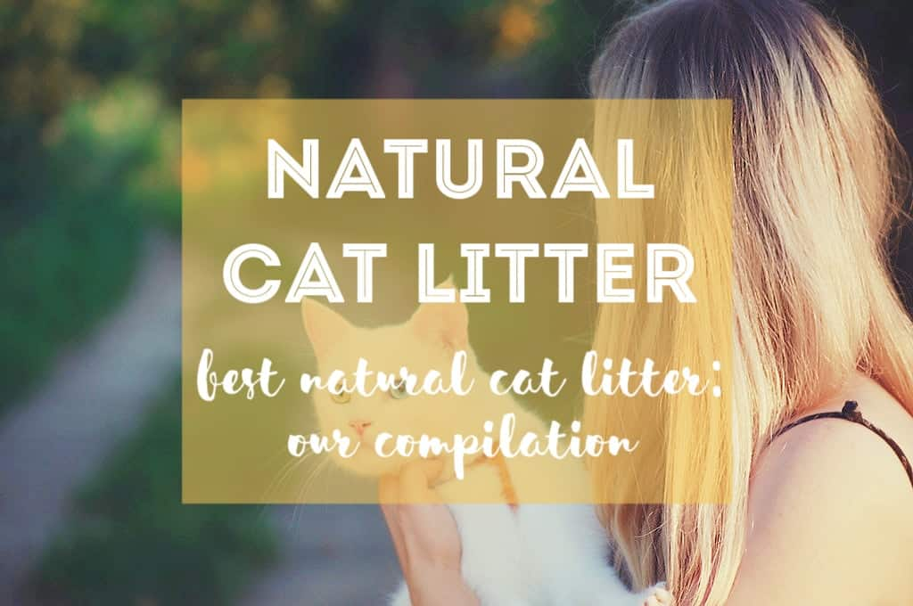 Best Natural Cat Litter Compilation 2018 | Fluffy Kitty
