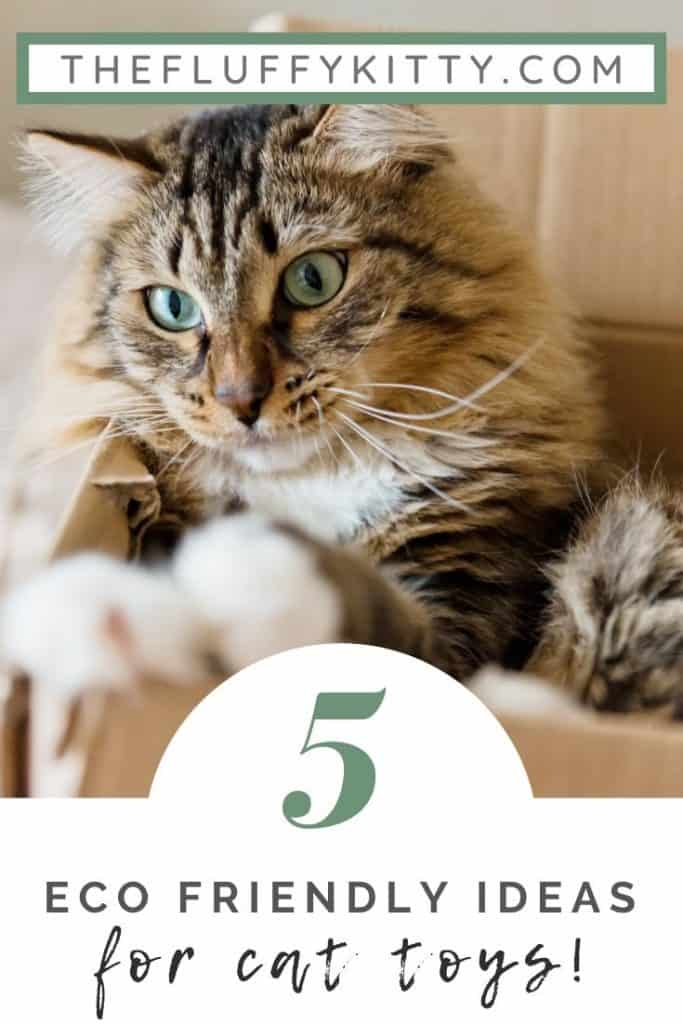 Eco-Friendly Cat Toys (Guide) | The Fluffy Kitty #ecofriendly #greenliving #pets #cats #lifestyle
