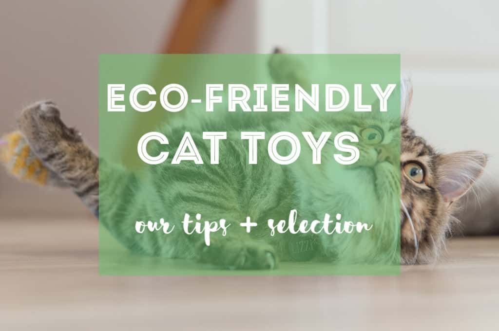 Eco-Friendly Cat Toys | Fluffy Kitty