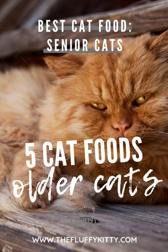 5 Cat Foods for Senior + Aging Cats #cats #seniorcats #oldcats #catfood Guide by Fluffy Kitty www.thefluffykitty.com