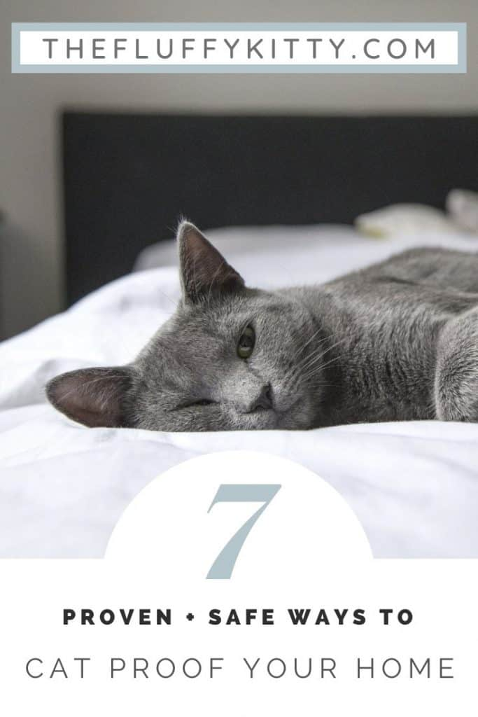 7 Ways to Cat-Proof Your Home #cats #catlovers #home #catcare