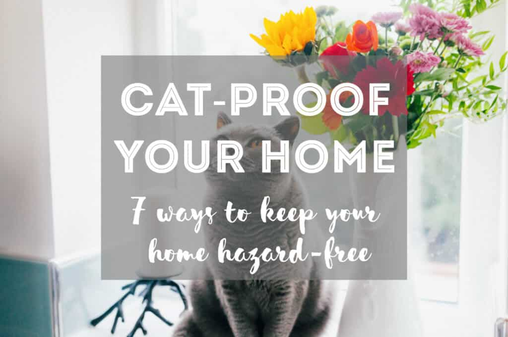 7 Ways to Cat-Proof Your Home | Fluffy Kitty