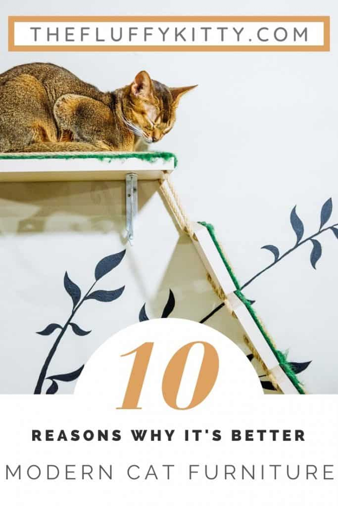 10 Reasons Why Modern Cat Furniture Is Better | The Fluffy Kitty www.thefluffykitty.com #catfurniture #modern #homedecor #cats