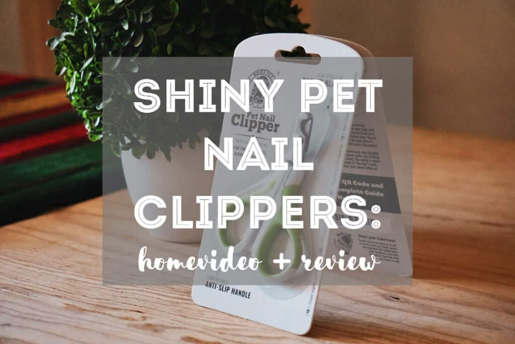 Shiny Pet Nail Clippers for Cats and Small Pets | Fluffy Kitty