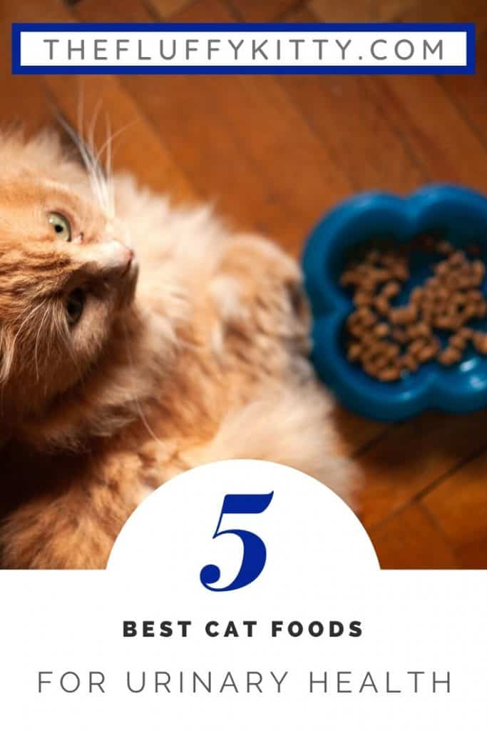 5 Best Cat Foods for Urinary Tract Health in Cats   Guide by The Fluffy Kitty www.thefluffykitty.com