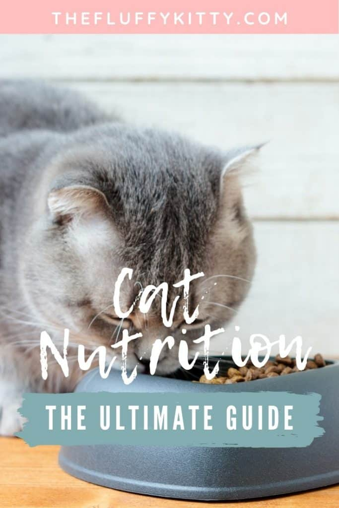 Cat Nutrition ULTIMATE GUIDE - Everything you need to know about your kitty's nutrition, vitamins minerals, best foods, etc. #catfoods #cats #cat #catlovers The Fluffy Kitty www.thefluffykitty.com