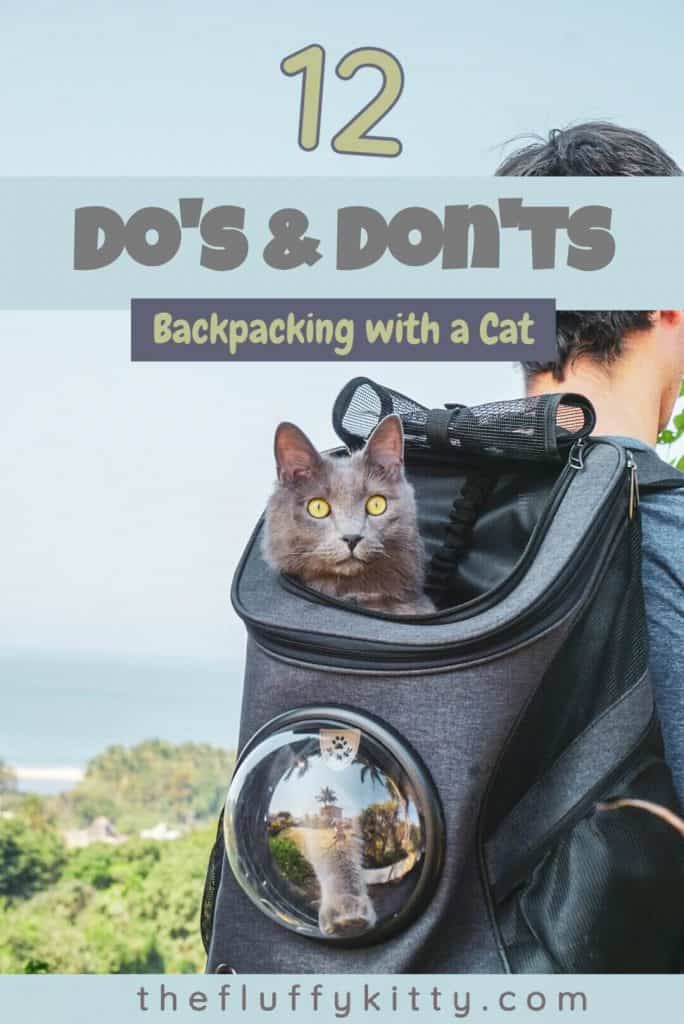 12 Do's & Don'ts of Backpacking with a Cat | Guide by Fluffy Kitty blog www.thefluffykitty.com