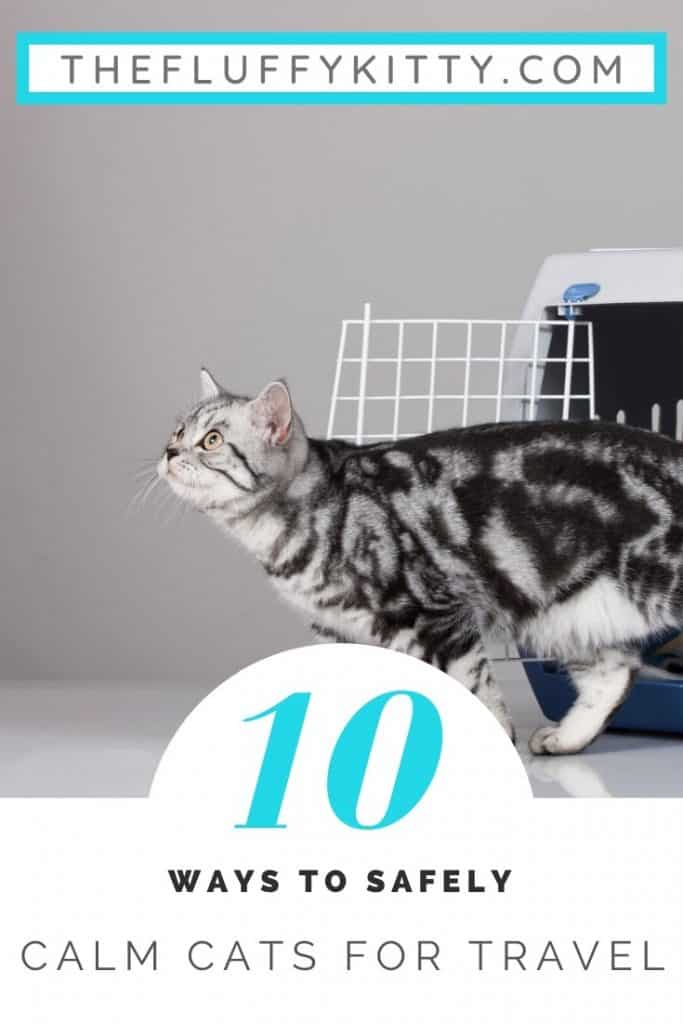 10 Ways to safely calm cats down for traveling. Guide by Fluffy Kitty www.thefluffykitty.com #cats #cattravel #cats #catcare
