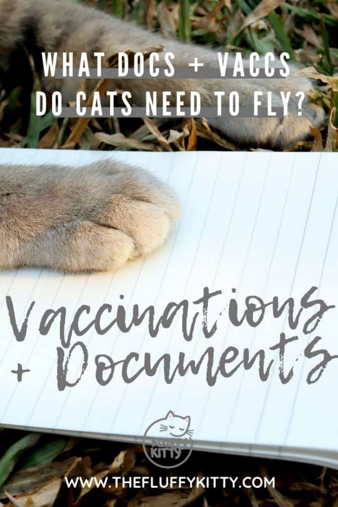 All the vaccinations and documents cats need in order fly on a plane. Cat travel guides by The Fluffy Kitty www.thefluffykitty.com