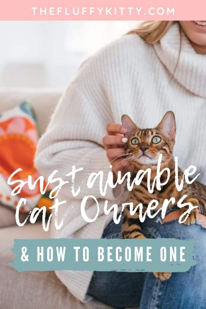 Sustainable Cat Ownership - The owners of the Fluffy Kitty cat blog share how they became sustainable cat owners and how you can too. www.thefluffykitty.com #cats #sustainability #catparents #ecofriendly