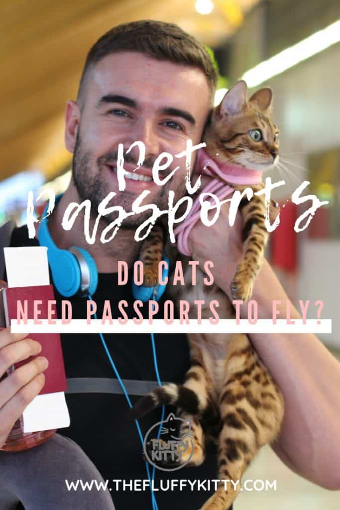 Pet Passports and Cat Passports - Does your cat need a passport in order to fly or travel? Find out here! THE FLUFFY KITTY www.thefluffykitty.com #cats #passport #travel #catblog