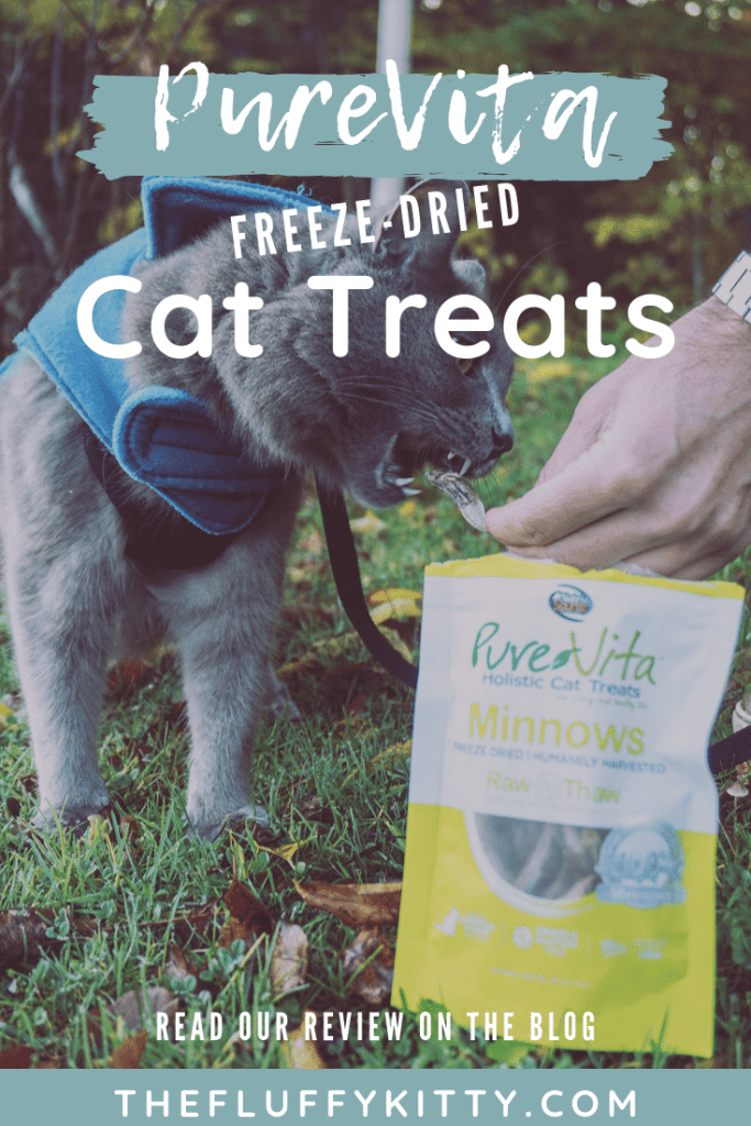 PureVita's Freeze-Dried Cat Treats | Review by Fluffy Kitty www.thefluffykitty.com