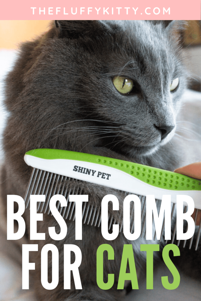 How to brush your cat at home using the Shiny Pet pet comb. | The Fluffy Kitty
