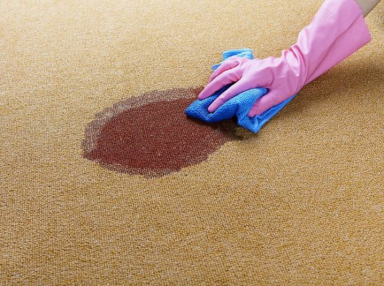 person with glove cleaning stain off carpet