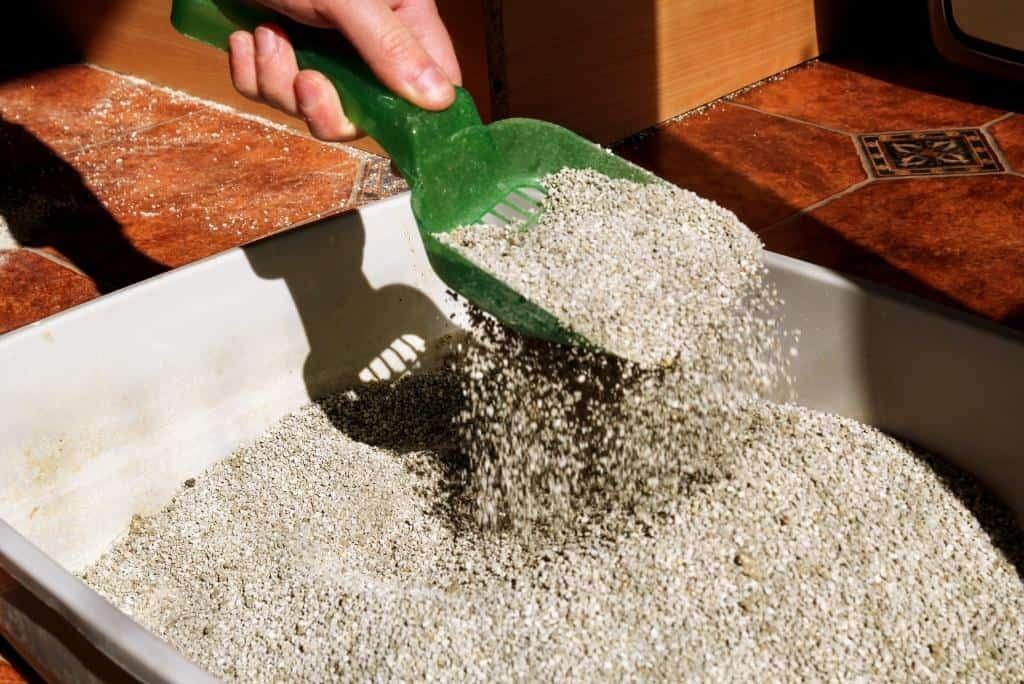 is breathing cat litter dust harmful