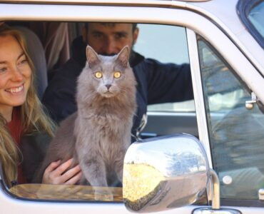 couples with cat traveling in an rv