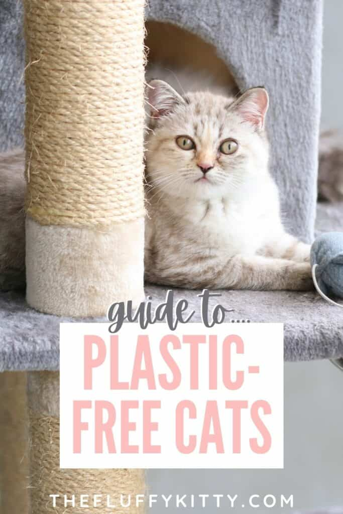 cat laying on cat tree, text overlay of plastic free cats
