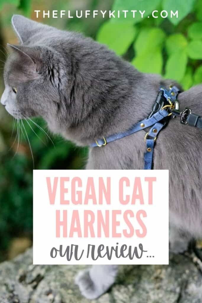 cat wearing blue vegan cork cat harness with text overlay