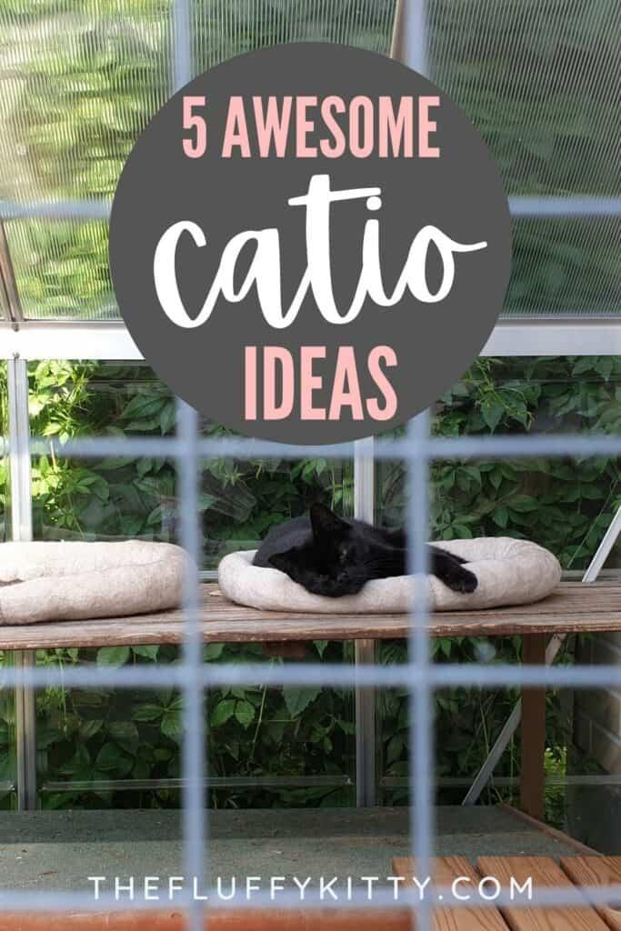 cat in cat bed inside outdoor catio