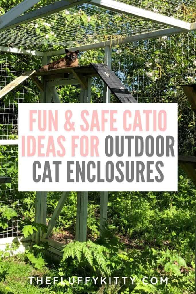 cat lounging in backyard catio cat enclosure