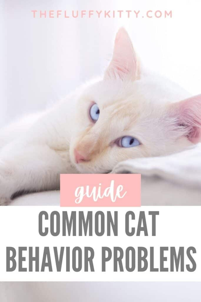 white cat with text overlay common behavior problems in cats