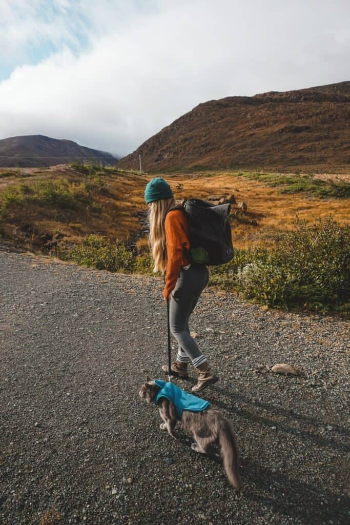 girl hiking with a cat on leash outside