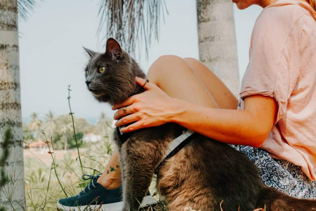 girl sitting next to cat on leash outdoors